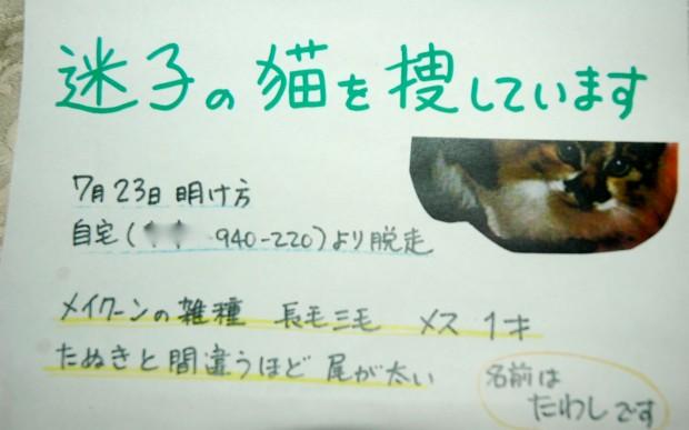 DSC_7575