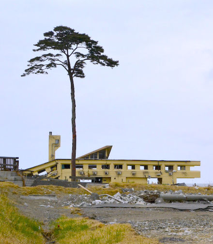 440px-Collapsed_Rikuzentakata_Youth_Hostel_and_a_Pine_Tree_of_Hope