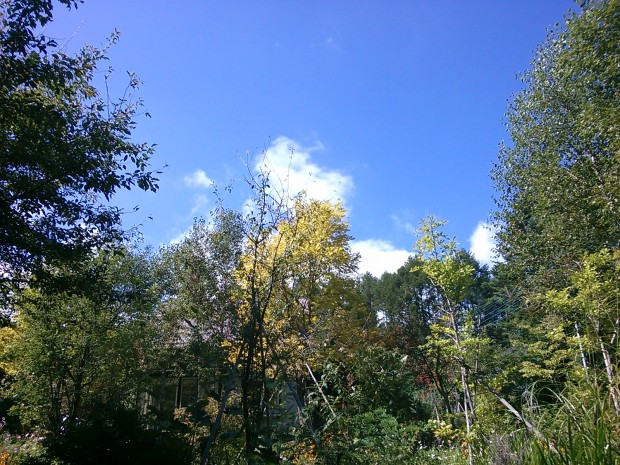 調布震度5弱に知るベクテル社と9月10日に見た二重虹