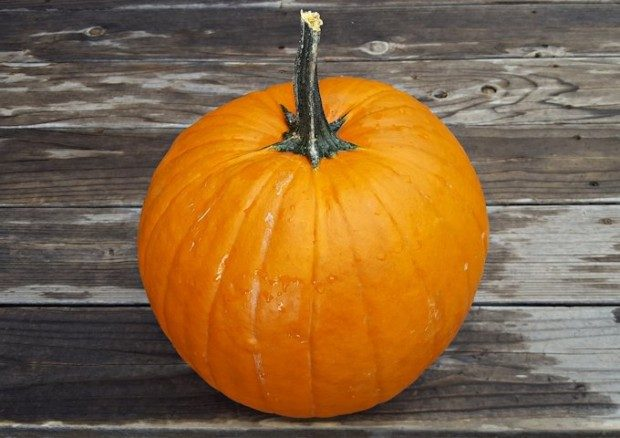 冬至の「新しい光」と不食な脳波に導くかぼちゃパワー