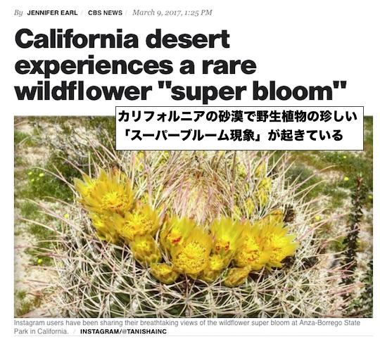 super-bloom-2017 (1)