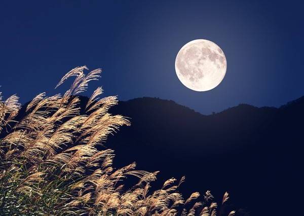 tc_2014godaisan_moon-thumb-600x426-155