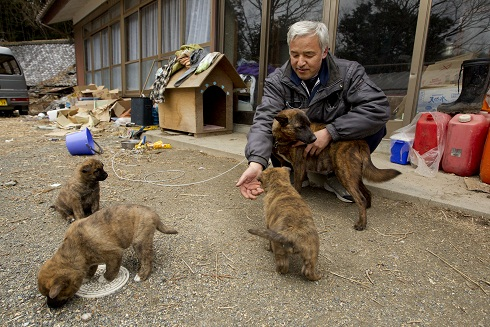 Naoto Matsumura plays with his dogs at his home in Tomioka, Fukushima prefecture, Japan, Thursday, March 8, 2012. (Hiro Komae)