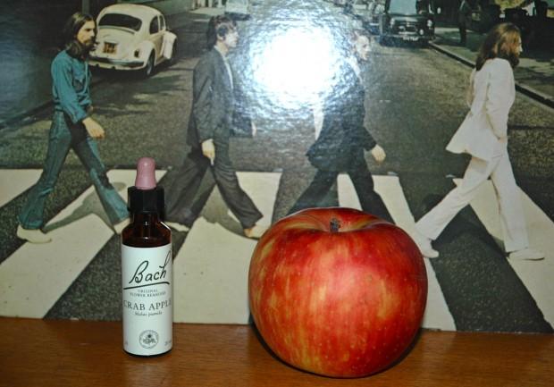 リンゴが語る1966年にシフトしたポール·マッカートニーとジョン・レノンの遺言