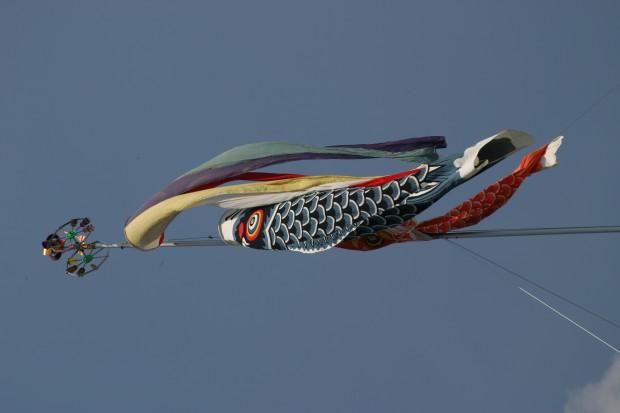 トランサーフィンの具体策とシュタイナー的「思考の起源」