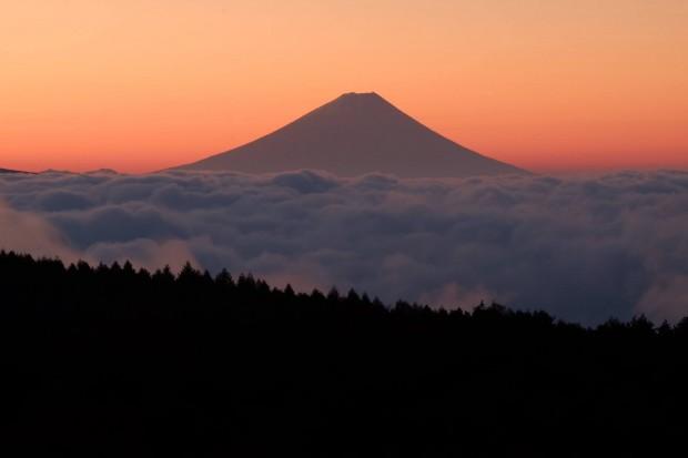 日本の尊厳を守るための「北海道・高橋はるみ知事」へのオンライン署名