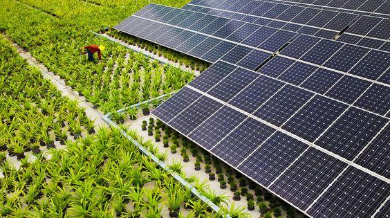 ゼロ磁場なパワースポット伊那の太陽光発電パネルの「スラップ訴訟」と3.11の計画停電