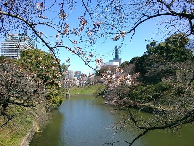サラザール牧師予言よりリアルなジェフリー・M・スミスの「日本捨て場」予言
