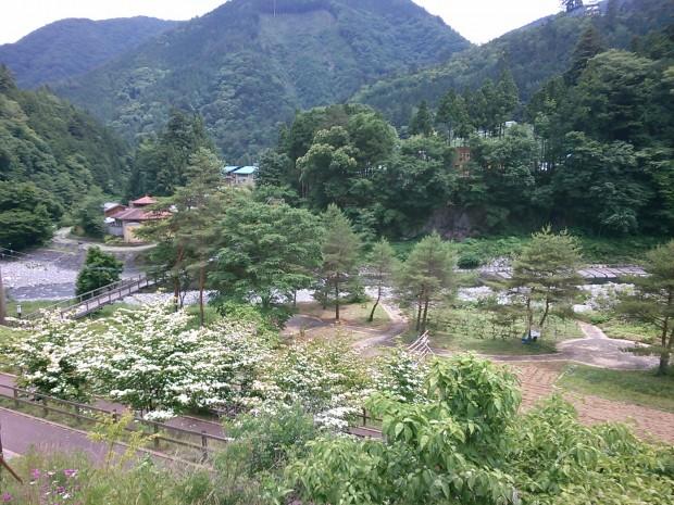 大菩薩峠近くの丹波村では「のめこい湯」と鹿肉ランチが楽しめますよ〜