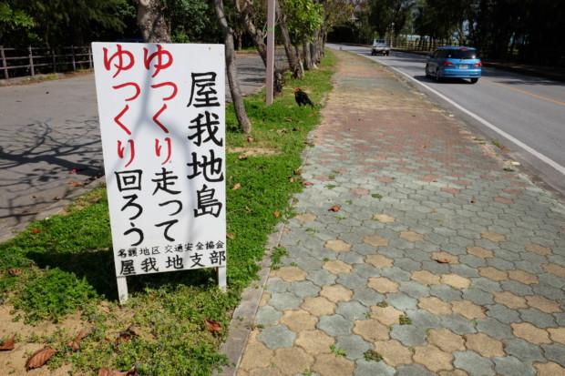 異常気象よりこわかった沖縄の知られざる「闘鶏」問題