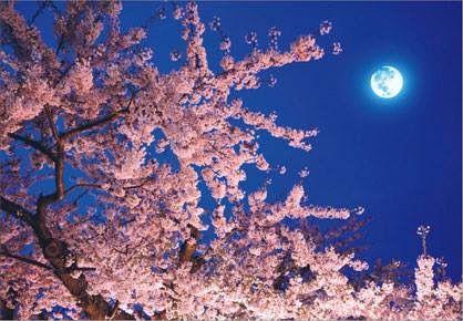 春分の日「宇宙元旦」なスーパームーンの注意点と幸運の120度