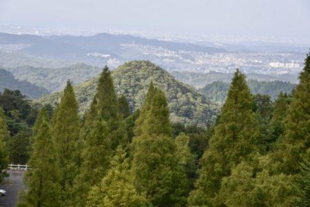 カタカムナ由来の六甲山で出会った羊さん達と神社が動物を祀る理由