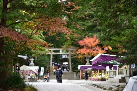 魅力満載な新潟・彌彦神社に知る「天照大神」とコンタクト出来る場所