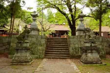 武漢コロナウィルス感染者 の世界的推移と甲府の風神パワー「大井俣窪八幡神社」
