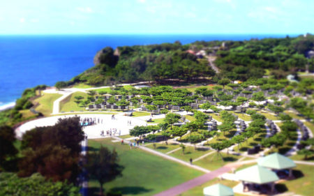 「沖縄慰霊の日」に知るヨモギ効果をも隠すコロナ情報戦の実態