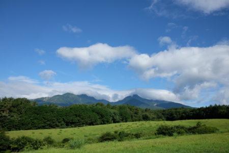 健康に役立つ「右回りと左回りの違い」と清里高原の夏花